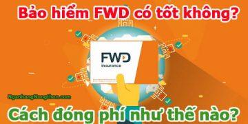 Bảo hiểm FWD có tốt không - Cách đóng phí như thế nào