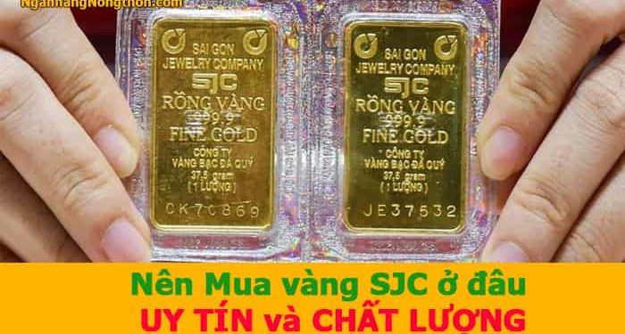 Nên Mua vàng SJC ở đâu UY TÍN và CHẤT LƯỢNG tại TP HCM, Hà Nội