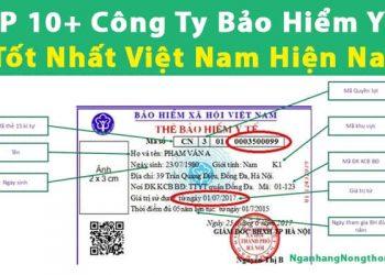 TOP 10+ Công Ty Bảo Hiểm Y Tế Tốt Nhất Việt Nam Hiện Nay