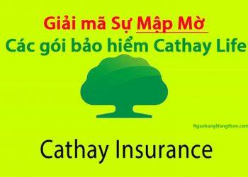 Cathay Life lừa đảo? Lợi ích vàng khi mua các gói bảo hiểm Cathay Life