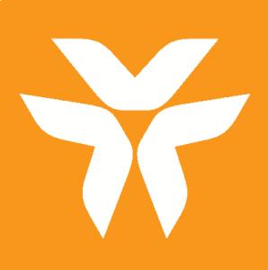 logo VIB