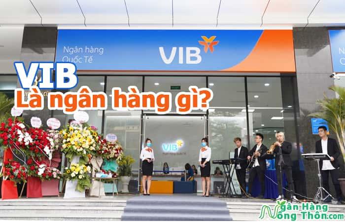 VIB là ngân hàng gì? VIB là viết tắt của ngân hàng nào?