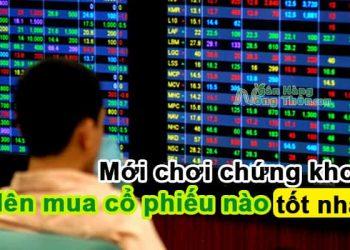 Mới chơi chứng khoán nên mua cổ phiếu nào hiện nay tốt nhất, tiềm năng đầu tư lâu dài
